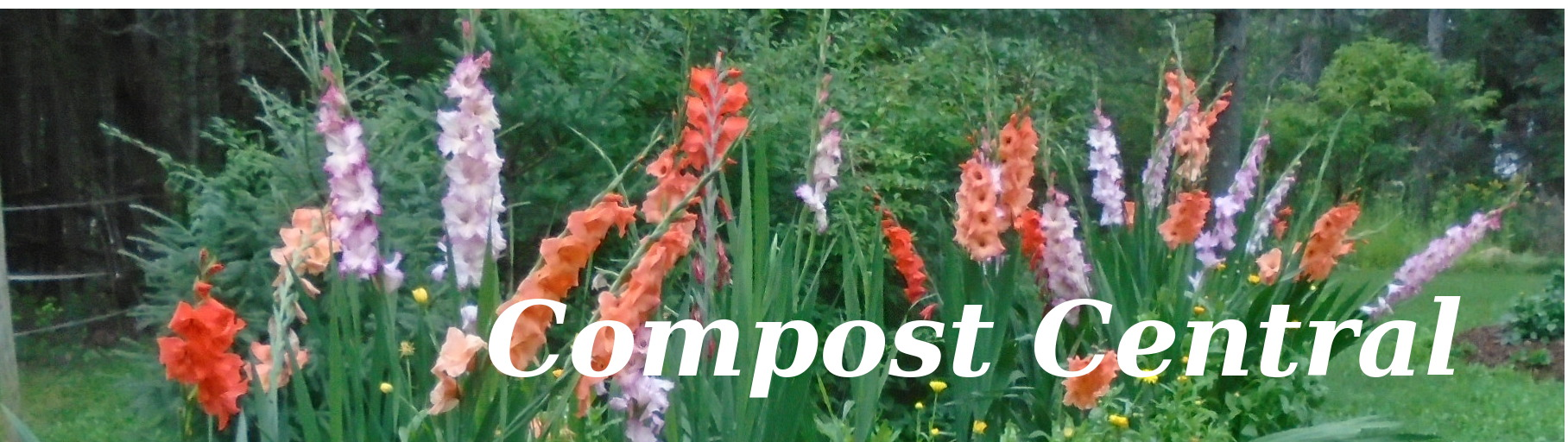 logo image for compost central